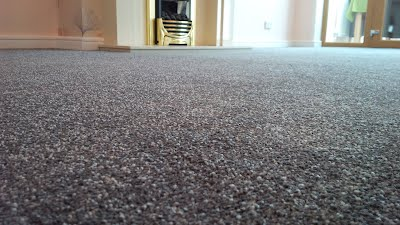 Thick Lounge Carpet